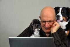 De mens probeert te werken, houden zijn honden hem bedrijf stock foto