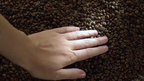 De mens spreidt zijn hand met geroosterde koffiebonen op uit een lijst stock videobeelden
