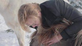 De mens strijkt snuit aanbiddelijke kleine poney bij boerderij dichte omhooggaand Concept het paardfokken Langzame Motie stock footage