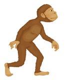De mens van de aap royalty-vrije illustratie