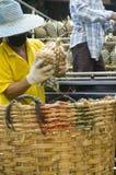 De mens van de ananas Stock Foto's