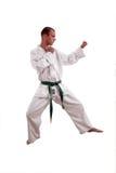 De mens van de karate royalty-vrije stock afbeeldingen