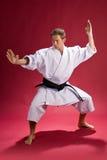 De mens van de karate stock afbeeldingen