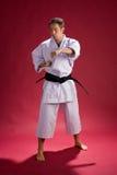 De mens van de karate   stock foto's
