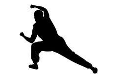 De mens van de karate het in dozen doen hoogte Vector Illustratie