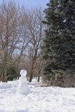 De mens van de sneeuw in het park Stock Foto's