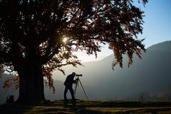 De mens van de wandelaartoerist met camera op grasrijke vallei op achtergrond van berglandschap onder grote boom stock afbeelding