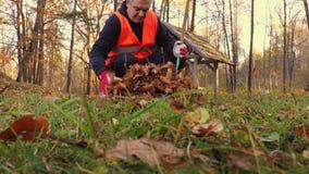 De mens verzamelt bladeren op gras in park stock footage