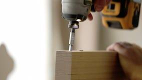 De mens verzamelt meubilair in een workshop De mannelijke handen verdraaien de schroef met een schroevedraaier stock footage