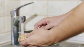 De mens wast en maakt de paddestoelen in de keuken schoon In het beeld, slechts worden de handen gezien stock video