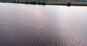 De mens zwemt in riviervolga luchtmening quadcopter stock footage