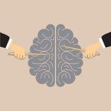 De menselijke hersenen Royalty-vrije Illustratie