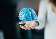 De menselijke hersenen op hand, denken, tumor, ideeën stock fotografie