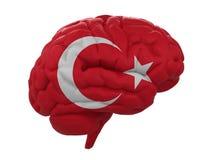 De menselijke hersenen zijn gekleurde vlag van Turkije Stock Foto's