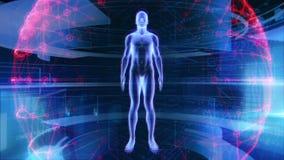 De menselijke Mannelijke Technologie van de de Biologiewetenschap van de Anatomie 3D Animatie vector illustratie