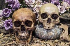 de menselijke schedel van het stillevenpaar met rozen en hout Stock Afbeelding