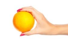 De menselijke sinaasappel van de handholding royalty-vrije stock foto's