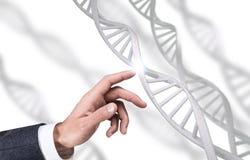 De menselijke van de handaanrakingen van ` s ketting van DNA het 3d teruggeven Royalty-vrije Stock Foto's