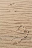 De menselijke voet op het zand Royalty-vrije Stock Afbeeldingen