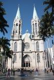 De mensen bij Se-Kathedraal regelen in Sao Paulo Stock Fotografie