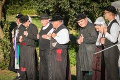 De mensen dansen in typisch kostuum Stock Foto