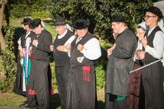 De mensen dansen in typisch kostuum Royalty-vrije Stock Afbeelding