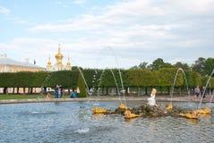 De mensen dichtbij Eiken Fontein in het Museum van de Staat bewaren Peterhof Rusland stock fotografie