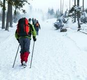 De mensen die op sneeuw wandelen slepen in de winter stock afbeelding