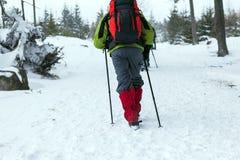 De mensen die op sneeuw wandelen slepen in de winter Royalty-vrije Stock Foto