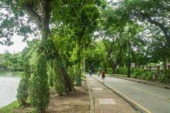 De mensen doen jogging en het lopen voor oefening bij groen park royalty-vrije stock foto's