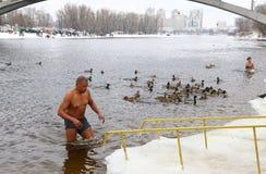 De mensen dompelen in ijzig water onder tijdens Epiphany-viering Stock Foto's