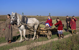 De mensen en het paard gaan over gebied Stock Foto's