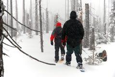 De mensen gaat door het hout op sneeuwschoenen Stock Afbeeldingen