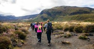De mensen kunnen gezien trekking langs de weg aan het Nationale Park van Tongariro, Nieuw Zeeland Royalty-vrije Stock Fotografie