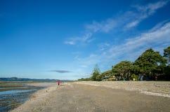 De mensen kunnen het gezien onderzoeken rond het Regionale Park van Omana in Auckland, Nieuw Zeeland Stock Afbeeldingen