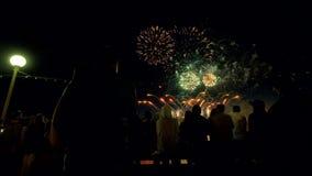 De mensen letten op het vuurwerk tonen stock video