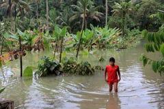 De mensen lopen door de overstroomde landbouwbedrijven stock foto