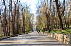 De mensen lopen in het park stock afbeelding