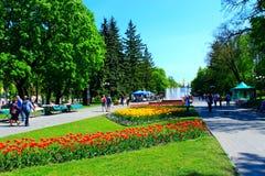 De mensen lopen in het park met bloembedden en fonteinen Stock Foto