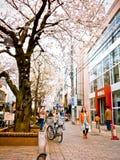 De mensen lopen in Jiyugaoka-het winkelen straat in lentetijd Royalty-vrije Stock Fotografie