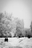 De mensen lopen op de snow-covered boulevard Royalty-vrije Stock Fotografie