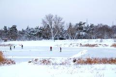 De mensen maken ijsspeelplaats voor het schaatsen en hockey royalty-vrije stock foto