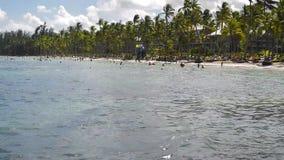 De mensen ontspannen op het strand onder palmen stock video
