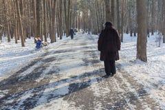 De mensen op proc in de winter parkeren royalty-vrije stock afbeeldingen