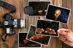 De mensen` s hand die paddestoelfoto's selecteren stapelt en oude grungecamera op uitstekende grunge houten achtergrond stock foto