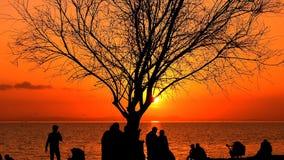De mensen silhouetteren in zonsondergang stock video