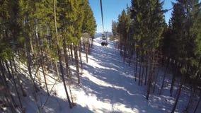 De mensen ski?en, hoge sparren op de helling, zonnige dag stock footage