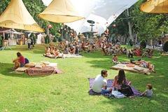 De mensen socialiseren met lezingsboeken en dranken in park stock afbeelding