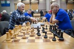 De mensen spelen schaak Stock Afbeeldingen
