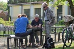 De mensen spelen schaak in een park stock afbeeldingen
